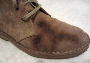 How to clean a suede shoe