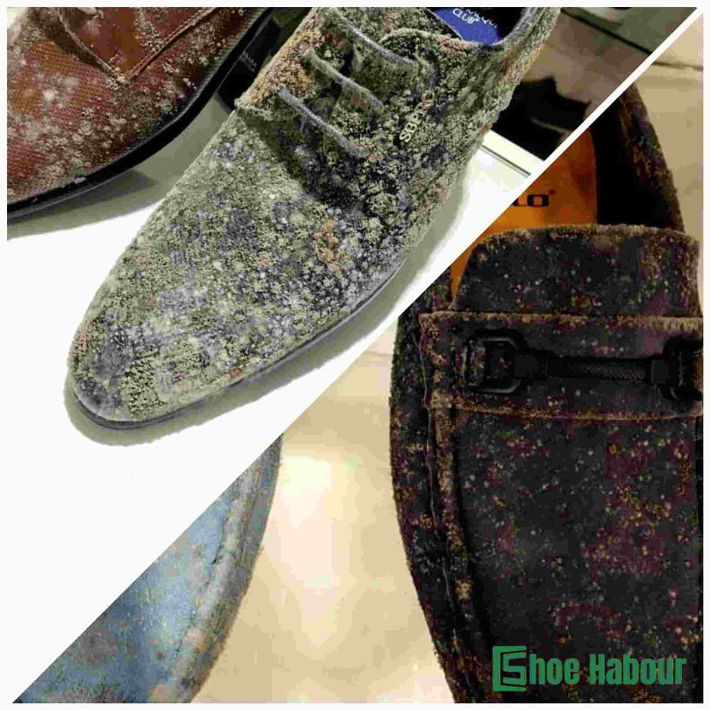 Shoes with mold